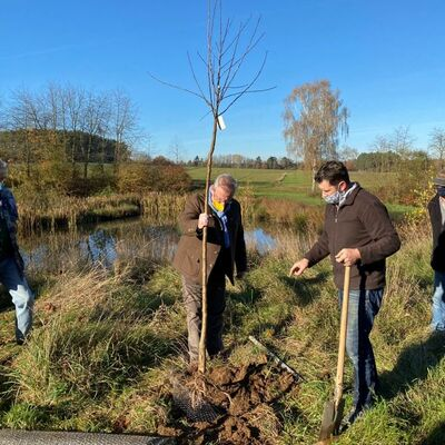 Baumpflanzaktion in Kreith